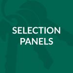 Selection Panels